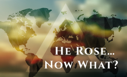 He Rose Now What
