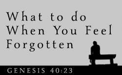 What To Do When You Feel Forgotten