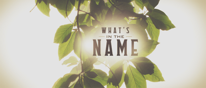 What's in the Name